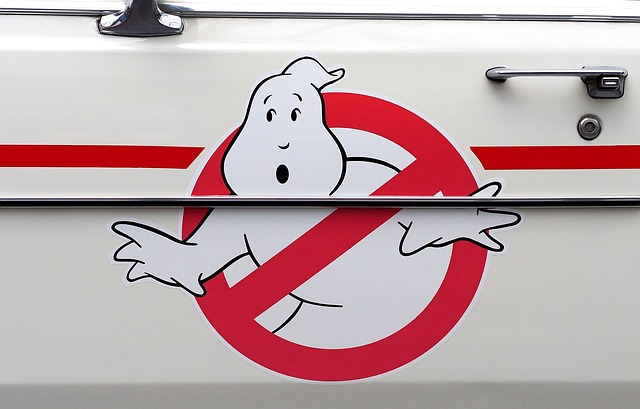 Ghost buster logo on car door